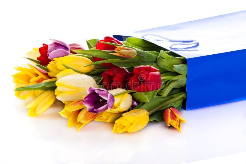 Τουλίπες που απομονώνονται στα άσπρα λουλούδια υποβάθρου στοκ φωτογραφία με δικαίωμα ελεύθερης χρήσης