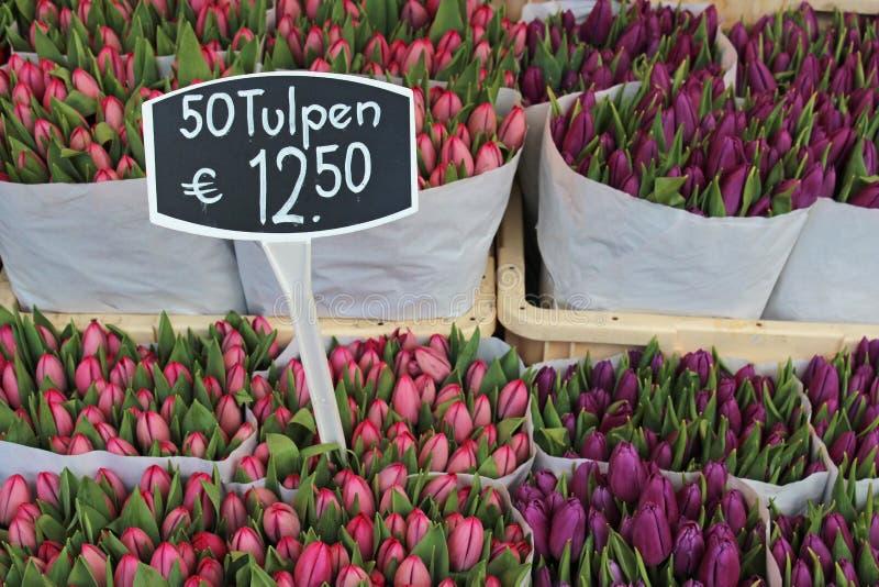 Τουλίπες στο Bloemenmarkt (αγορά λουλουδιών) Άμστερνταμ στοκ εικόνα