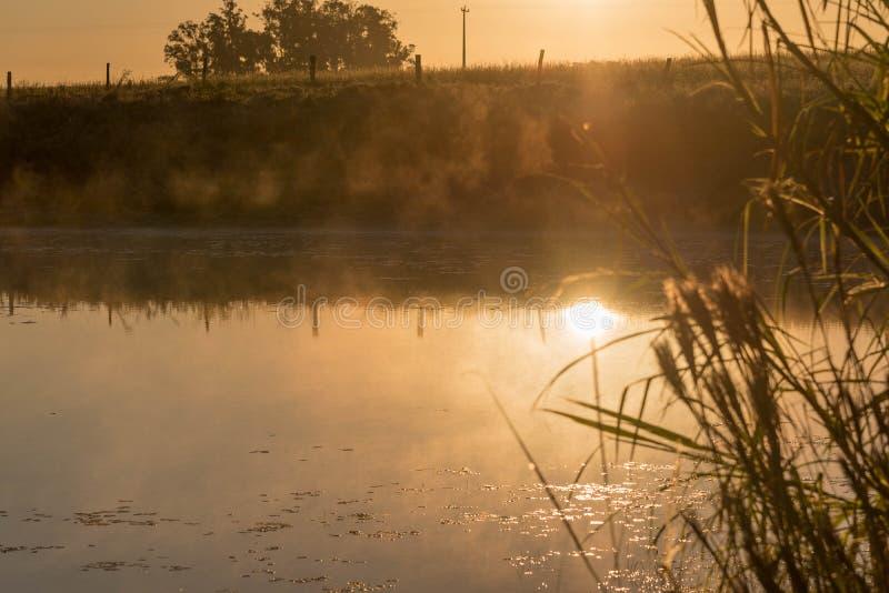 Του γλυκού νερού λίμνη στην αυγή 01 στοκ φωτογραφίες με δικαίωμα ελεύθερης χρήσης
