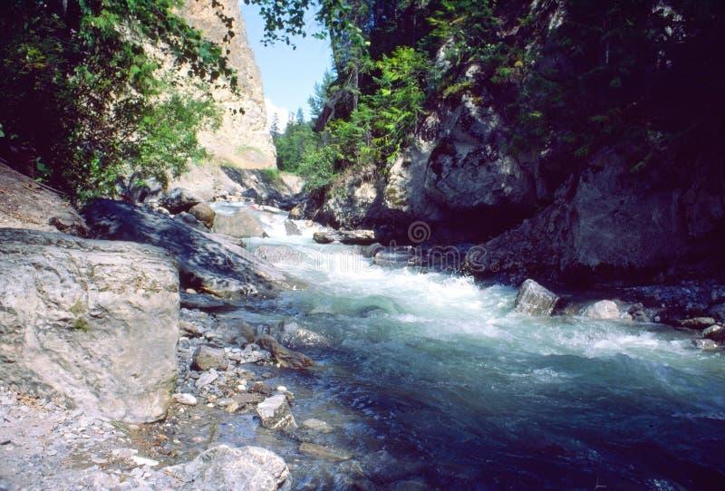 του Καναδά εθνικό πάρκο β&omi στοκ φωτογραφίες με δικαίωμα ελεύθερης χρήσης