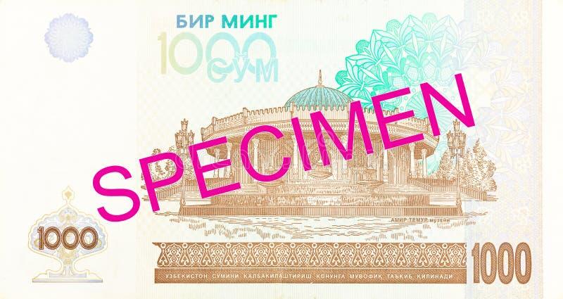 Του Ουζμπεκιστάν αντίστροφο δείγμα τραπεζογραμματίων SOM 1000 στοκ φωτογραφία με δικαίωμα ελεύθερης χρήσης