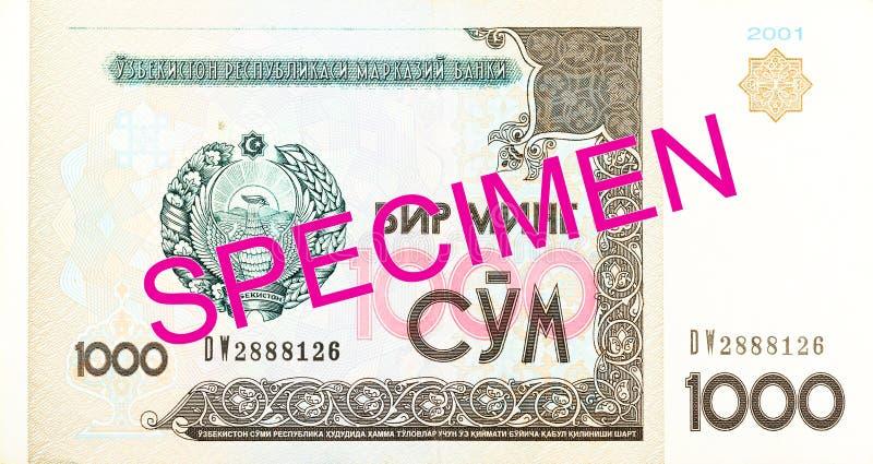 Του Ουζμπεκιστάν εμπρόσθιο δείγμα τραπεζογραμματίων SOM 1000 στοκ εικόνες με δικαίωμα ελεύθερης χρήσης