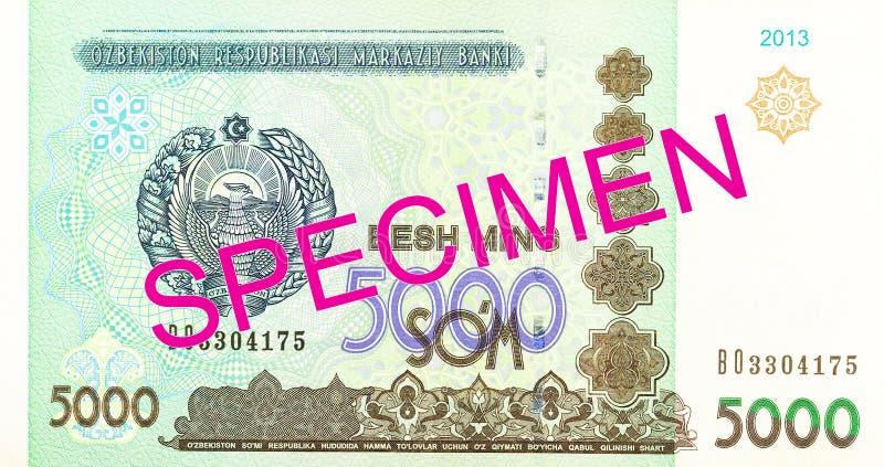 Του Ουζμπεκιστάν εμπρόσθιο δείγμα τραπεζογραμματίων SOM 5000 στοκ εικόνες με δικαίωμα ελεύθερης χρήσης