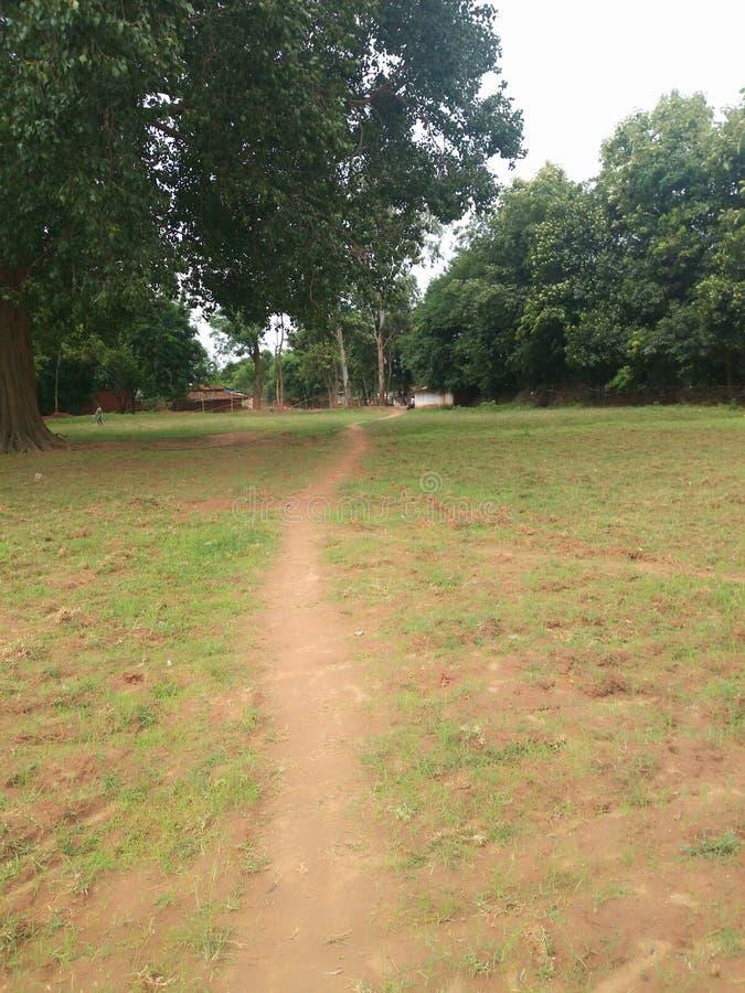 Του χωριού έδαφος και δέντρο στοκ εικόνες