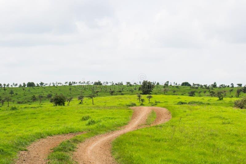 Του χωριού διαδρομή και λιβάδι στοκ εικόνες