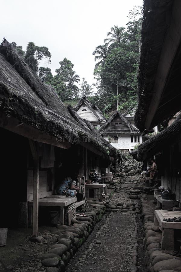 Του χωριού δράκος στοκ εικόνα με δικαίωμα ελεύθερης χρήσης