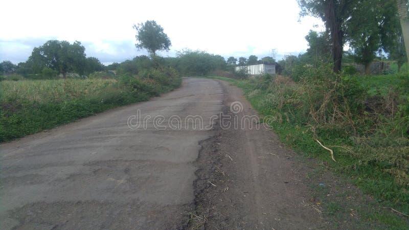 Του χωριού δρόμος και γεωργία Indias στοκ εικόνα με δικαίωμα ελεύθερης χρήσης