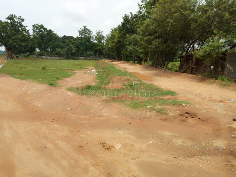 του χωριού δρόμος και δέντρο στοκ φωτογραφία