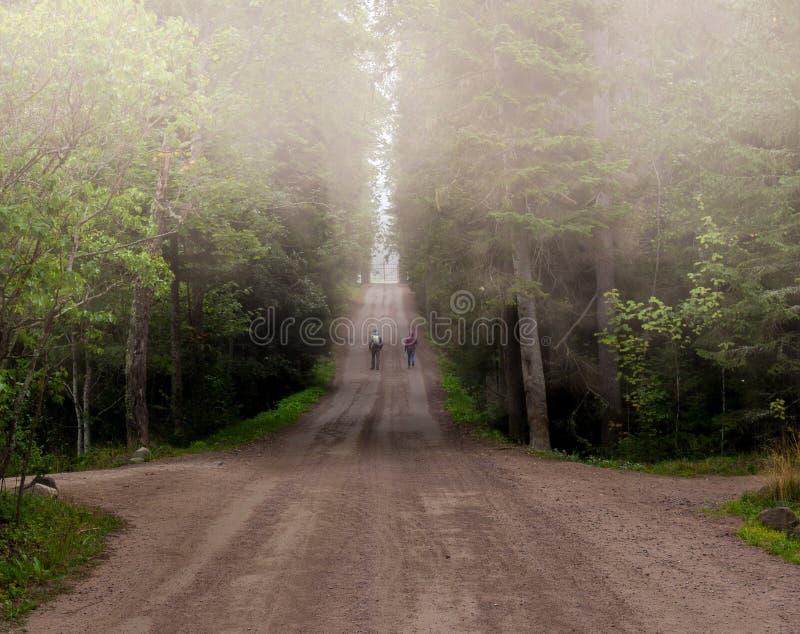 Του χωριού δρόμος στην ομίχλη και τους περπατώντας ανθρώπους στοκ φωτογραφίες