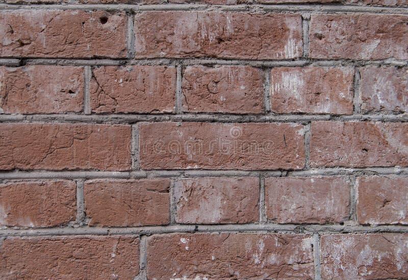 Τούβλινος τοίχος - συγκεκριμένη τεκτονική Το τούβλο είναι λερωμένο στοκ εικόνα
