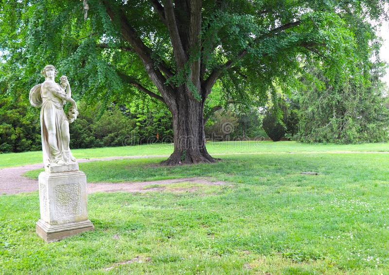 Το άγαλμα και το μεγάλο δέντρο στο χορτοτάπητα παρέχουν μια Ethereal αίσθηση σε αυτήν την σκηνή πάρκων στοκ εικόνα με δικαίωμα ελεύθερης χρήσης