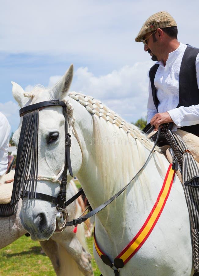 Το άλογο corralejo 28 Απριλίου εμφανίζει Ισπανία στοκ εικόνες