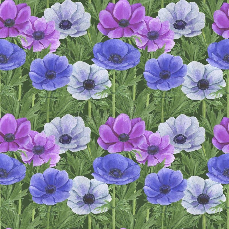 Το άνευ ραφής σχέδιο με το watercolor ανθίζει την απεικόνιση Anemone φύλλων κλαδάκι του Floral φύλλων κλωστοϋφαντουργικού προϊόντ απεικόνιση αποθεμάτων