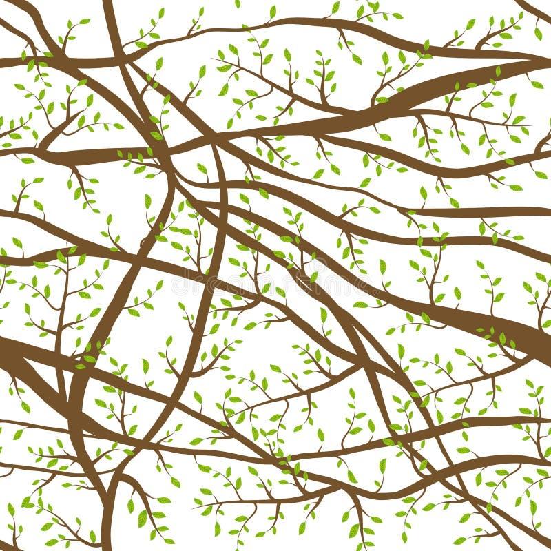 Το άνευ ραφής σχέδιο μπλέχτηκε τους καφετιούς κλάδους με τα πράσινα φύλλα στο άσπρο αφηρημένο υπόβαθρο για την περιοχή, blog, ύφα ελεύθερη απεικόνιση δικαιώματος