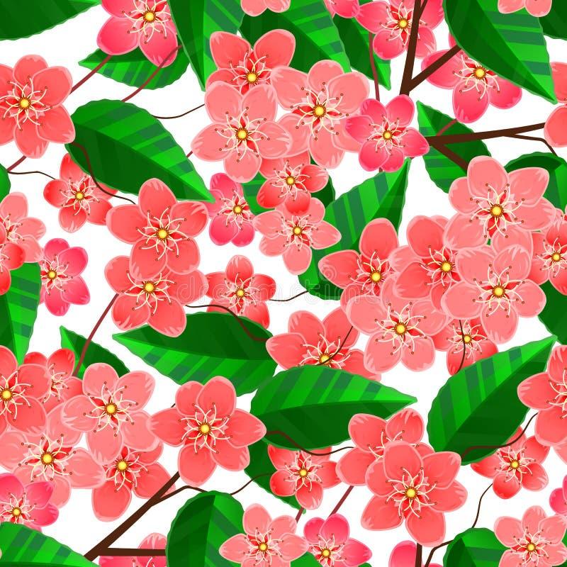 Το άνευ ραφής σχέδιο με το sakura ανθίζει τους κλάδους απεικόνιση αποθεμάτων