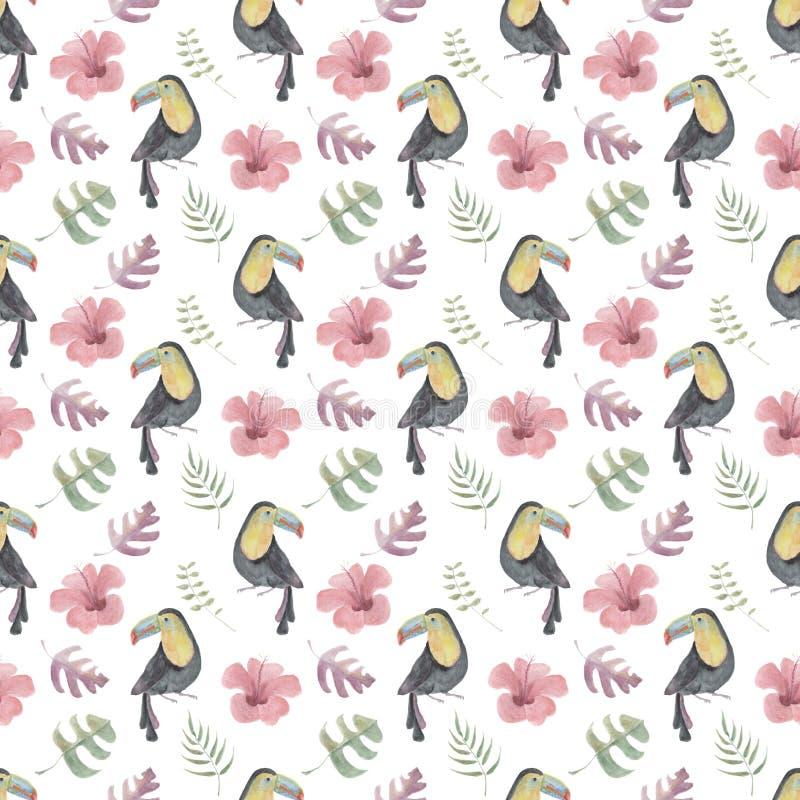 Το άνευ ραφής σχέδιο Watercolor με τα toucans, τροπικά λουλούδια και βγάζει φύλλα στο άσπρο υπόβαθρο απεικόνιση αποθεμάτων