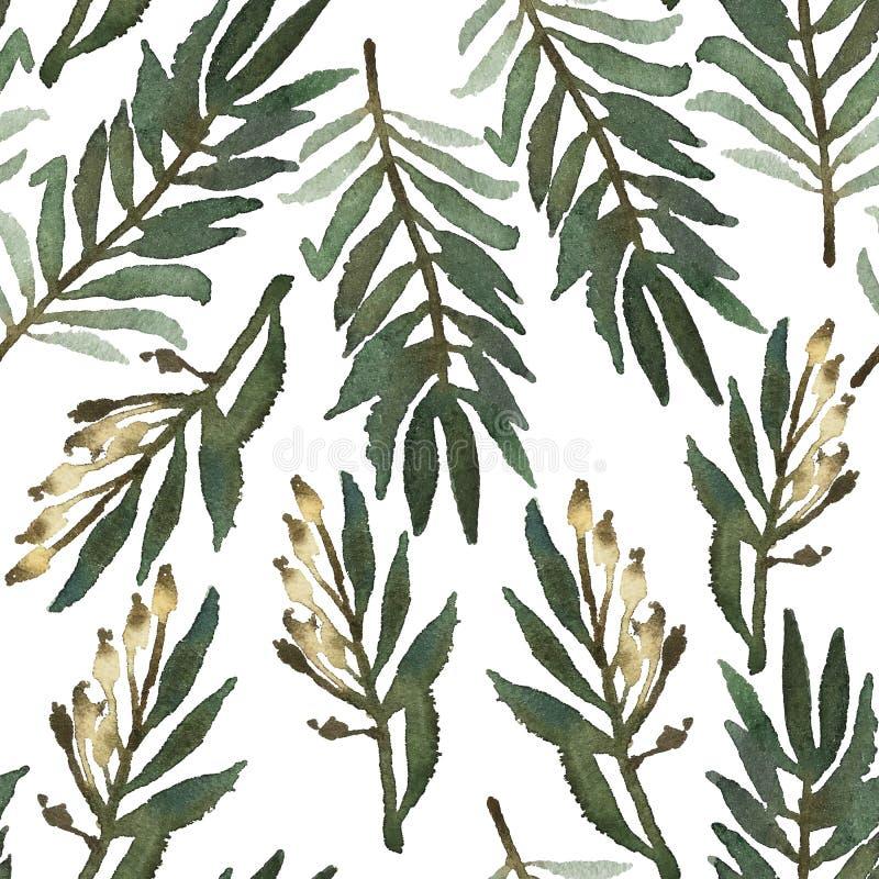 Το άνευ ραφής χέρι επεξήγησε το floral σχέδιο Βοτανικό υπόβαθρο Watercolor απεικόνιση αποθεμάτων