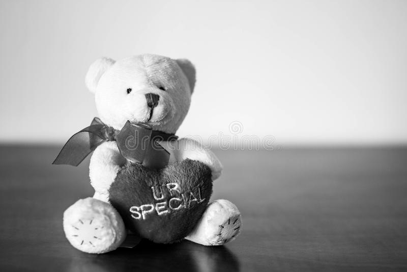 Το άσπρο βελούδο Teddy αντέχει στοκ εικόνες