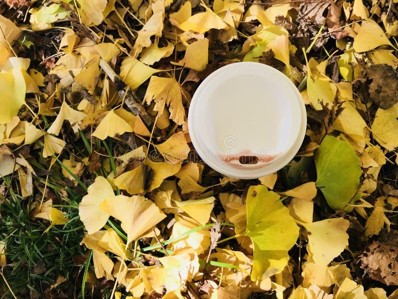 Το άσπρο φλυτζάνι του καυτού καφέ με το κόκκινο σημάδι κραγιόν και το κίτρινο ginkgo φεύγει στοκ εικόνα