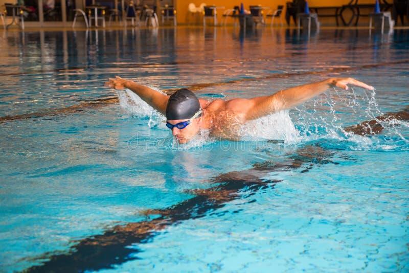 Το άτομο κολυμπά την πισίνα ύφους πεταλούδων δημόσια στοκ εικόνες