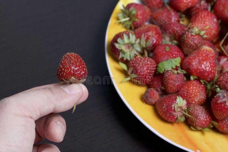 Το άτομο κρατά τη φράουλα στο χέρι του Κρατά το χέρι της σε ένα πιάτο των φραουλών Επόμενο πιάτο με τα βερίκοκα και το μήλο στοκ φωτογραφίες