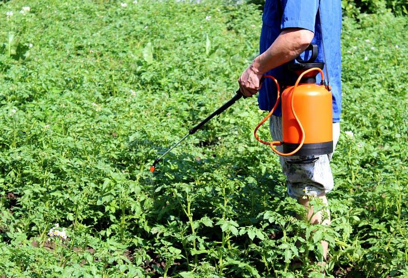 Το άτομο dacha ψεκάζει το δηλητήριο από τα παράσιτα στοκ εικόνα με δικαίωμα ελεύθερης χρήσης