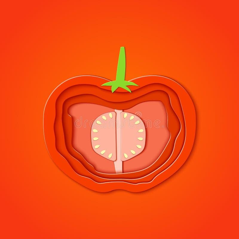 Το έγγραφο έκοψε την κόκκινη ντομάτα Το διανυσματικό έγγραφο έκοψε το σχέδιο υπό μορφή ώριμης μισής ντομάτας για το σχέδιο της συ διανυσματική απεικόνιση