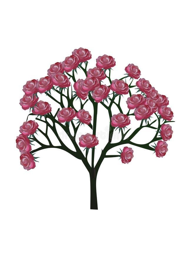 Το δέντρο, αυξήθηκε, λουλούδι στοκ εικόνες