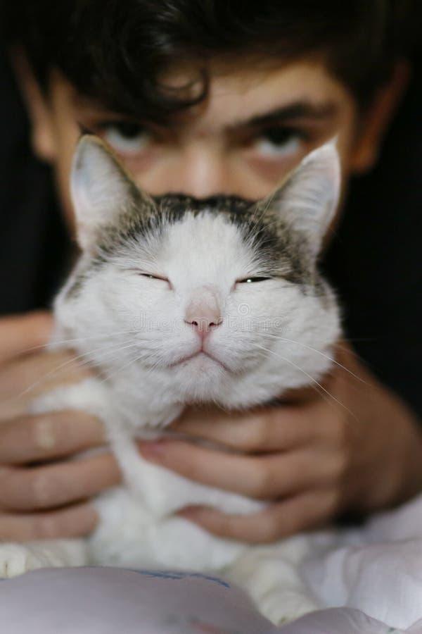 Το έφηβο αγόρι κοιμάται με τη γάτα στο κρεβάτι στοκ εικόνα
