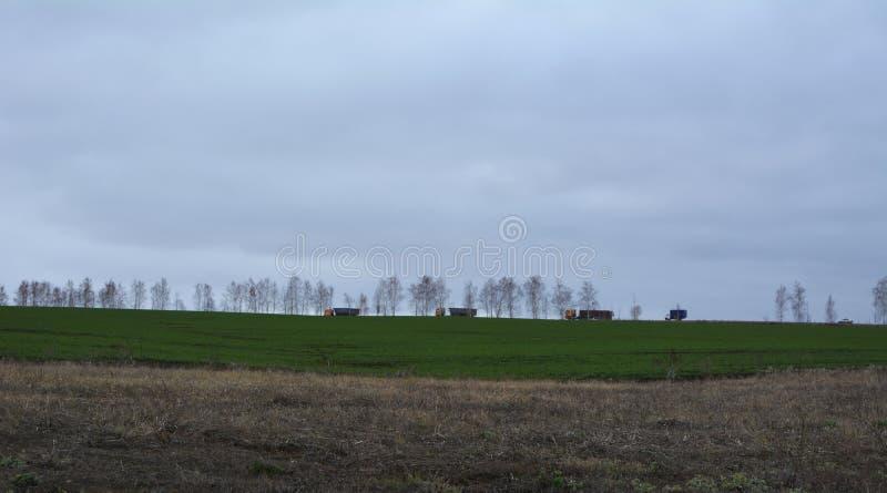 Το αγροτικό τοπίο με τον πράσινο τομέα των χειμερινών συγκομιδών, των δέντρων στον ορίζοντα, των φορτηγών στο δρόμο και stratus κ στοκ εικόνες