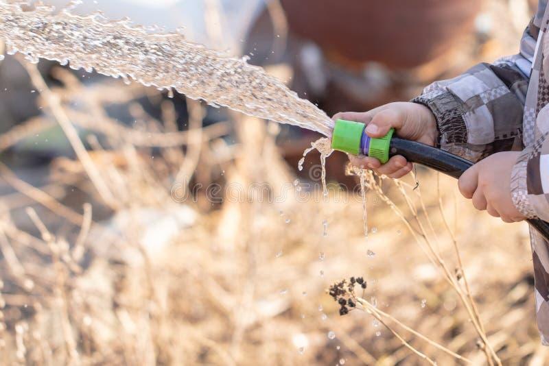 Το αγόρι ποτίζει τον κήπο με μια μάνικα στοκ φωτογραφία με δικαίωμα ελεύθερης χρήσης