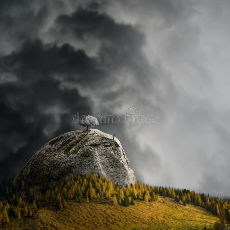 Το αγόρι στέκεται στην άκρη του βουνού με ένα κερασιάτικο άνθος δέντρο και κοιτάζει προς το δάσος, στροφή κλίσης στοκ εικόνες με δικαίωμα ελεύθερης χρήσης