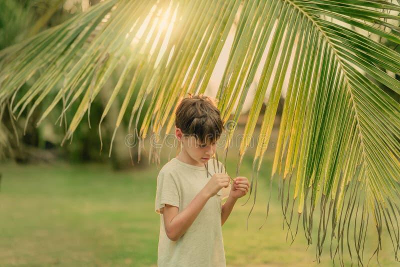 Το αγόρι στην πράσινη χλόη που κρατά έναν κλάδο φοινικών στοκ φωτογραφίες
