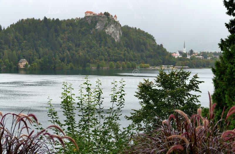 Το αιμορραγημένο Castle που χτίστηκε πάνω από έναν απότομο βράχο που αγνοεί τη λίμνη αιμορράγησε, τοποθετημένος αιμορραγημένος, Σ στοκ φωτογραφία