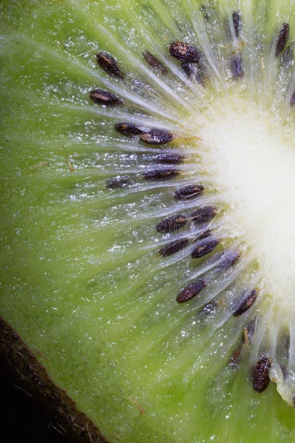 Το ακτινίδιο, σπόρος, σχέδιο, φρούτα, ραβδώσεις, λάμπει, σύσταση, έντονο φως, σάρκα στοκ φωτογραφία με δικαίωμα ελεύθερης χρήσης
