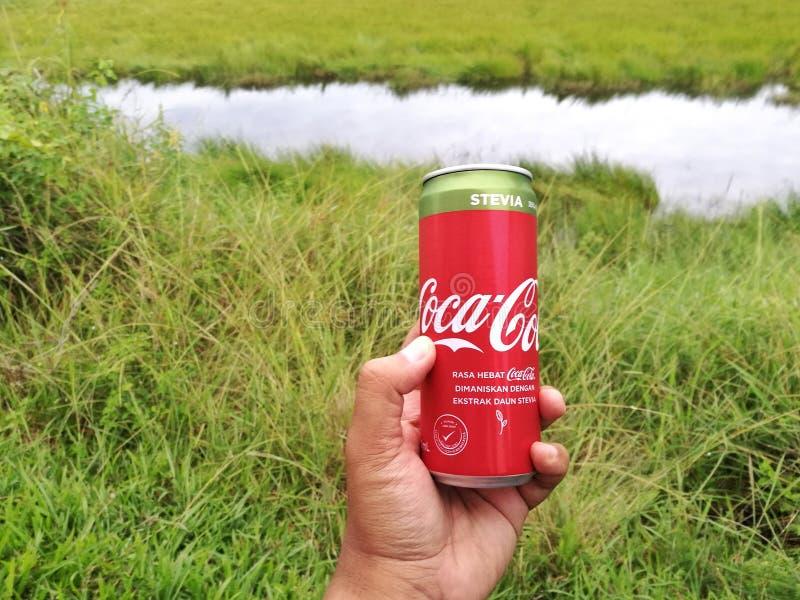 Το αλουμίνιο μπορεί να πιει της COCA-COLA με το stevia στοκ φωτογραφία με δικαίωμα ελεύθερης χρήσης