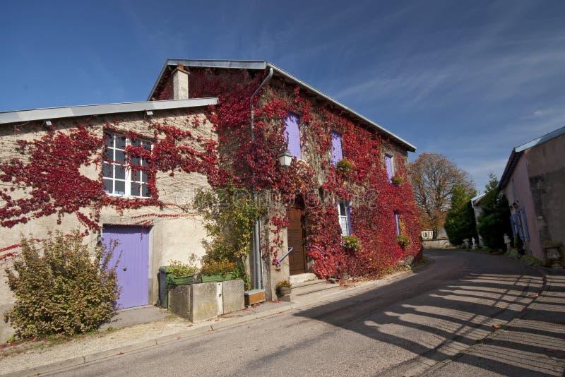 το αναρριχητικό φυτό Γαλλία στεγάζει λίγο κόκκινο τοίχο φυτών στοκ εικόνες με δικαίωμα ελεύθερης χρήσης