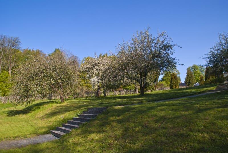το ανθίζοντας μέγαρο κήπων μπορεί κόκκινο στοκ εικόνες