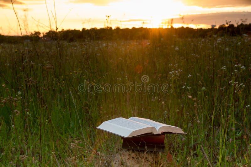 Το ανοιγμένο ημερολόγιο βιβλίων βιβλίων με σκληρό εξώφυλλο, αέρισε τις σελίδες στα θολωμένα εδάφη φύσης στοκ εικόνα με δικαίωμα ελεύθερης χρήσης