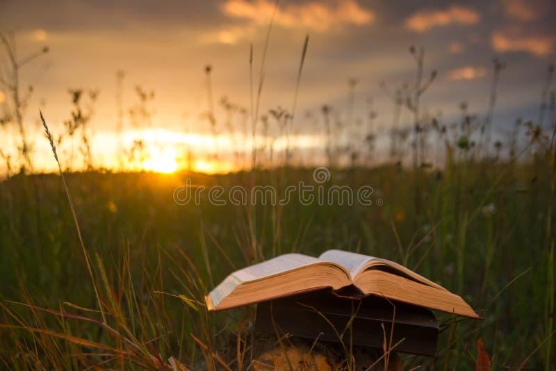 Το ανοιγμένο ημερολόγιο βιβλίων βιβλίων με σκληρό εξώφυλλο, αέρισε τις σελίδες στα θολωμένα εδάφη φύσης στοκ εικόνες