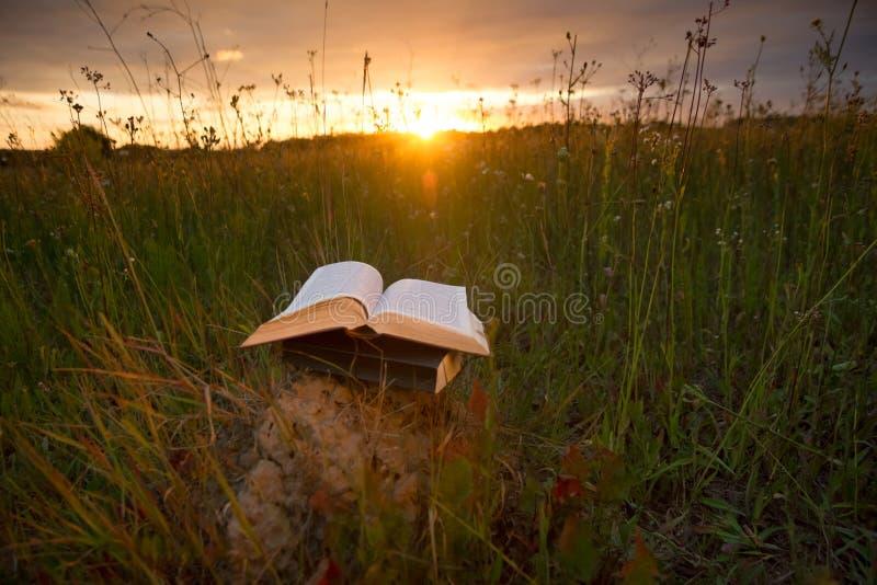 Το ανοιγμένο ημερολόγιο βιβλίων βιβλίων με σκληρό εξώφυλλο, αέρισε τις σελίδες στα θολωμένα εδάφη φύσης στοκ φωτογραφίες με δικαίωμα ελεύθερης χρήσης