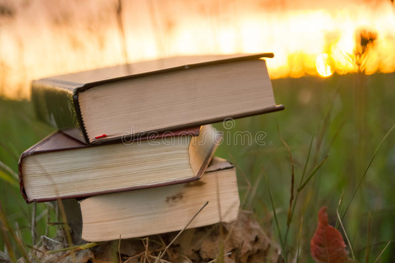 Το ανοιγμένο ημερολόγιο βιβλίων βιβλίων με σκληρό εξώφυλλο, αέρισε τις σελίδες στα θολωμένα εδάφη φύσης στοκ φωτογραφίες