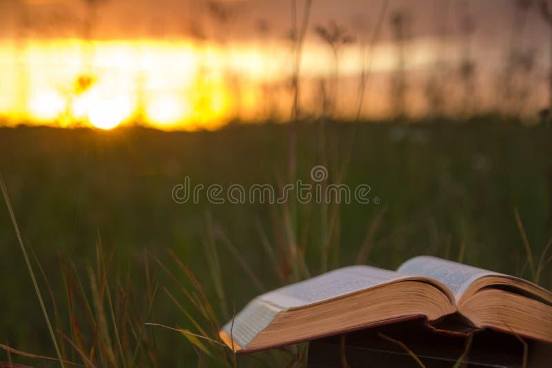 Το ανοιγμένο ημερολόγιο βιβλίων βιβλίων με σκληρό εξώφυλλο, αέρισε τις σελίδες στα θολωμένα εδάφη φύσης στοκ εικόνες με δικαίωμα ελεύθερης χρήσης