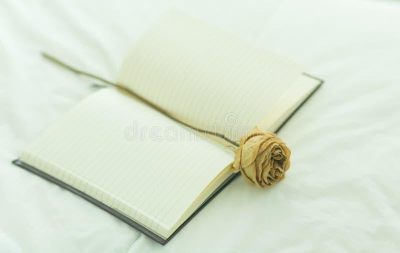 Το ανοικτό βιβλίο με έναν ξηρό αυξήθηκε Κρεβατοκάμαρα Εκλεκτής ποιότητας τόνος στοκ εικόνες