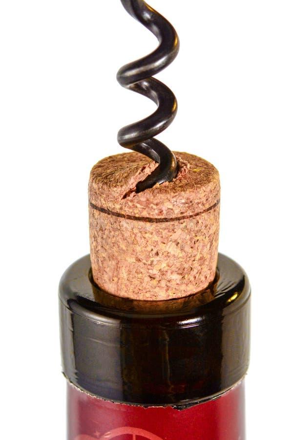 Το ανοιχτήρι βγάζει έναν φελλό από το μπουκάλι του κόκκινου κρασιού Στενή επάνω μακροεντολή φελλού, που απομονώνεται στο άσπρο υπ στοκ εικόνα