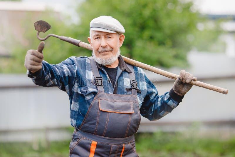 Το ανώτερο ηλικιωμένο άτομο παίρνει τη γη με τη σκαπάνη μπαλτάδων στον τομέα πατατών Αγρόκτημα eco έννοιας, γεωργία στοκ εικόνα με δικαίωμα ελεύθερης χρήσης