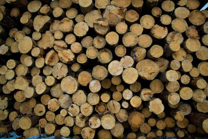 Το απόθεμα συνδέεται τη χειμερινή δασική βιομηχανική αποδάσωση στοκ εικόνες με δικαίωμα ελεύθερης χρήσης