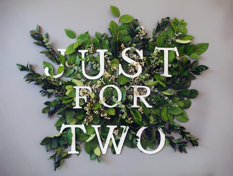Το απόσπασμα, ακριβώς για δύο, που γράφεται επάνω μεταξύ βγάζει φύλλα του euqalyptus Καλή ανασκόπηση στοκ εικόνες