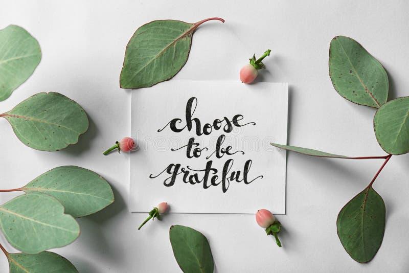 Το απόσπασμα ` επιλέγει να είναι ευγνώμον ` που γράφεται σε χαρτί με τα φύλλα και τα μούρα στο άσπρο υπόβαθρο Τοπ όψη στοκ εικόνες