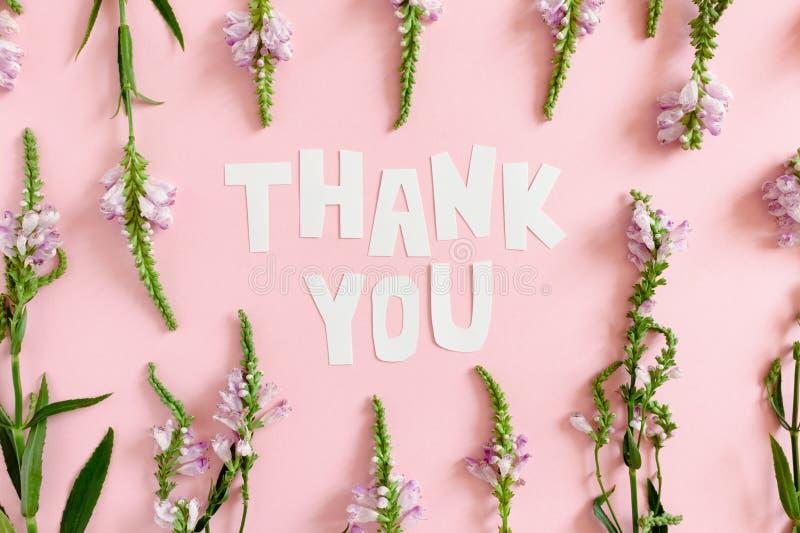 Το απόσπασμα ευχαριστεί εσείς έκανε των επιστολών που αποκόπτουν του εγγράφου Σχέδιο φιαγμένο από άγρια λουλούδια στοκ εικόνα με δικαίωμα ελεύθερης χρήσης